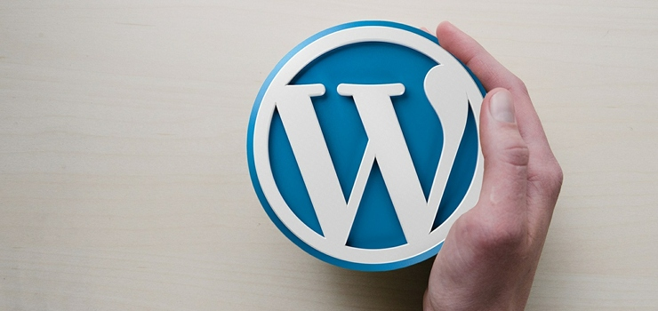 wordpress-web-elche